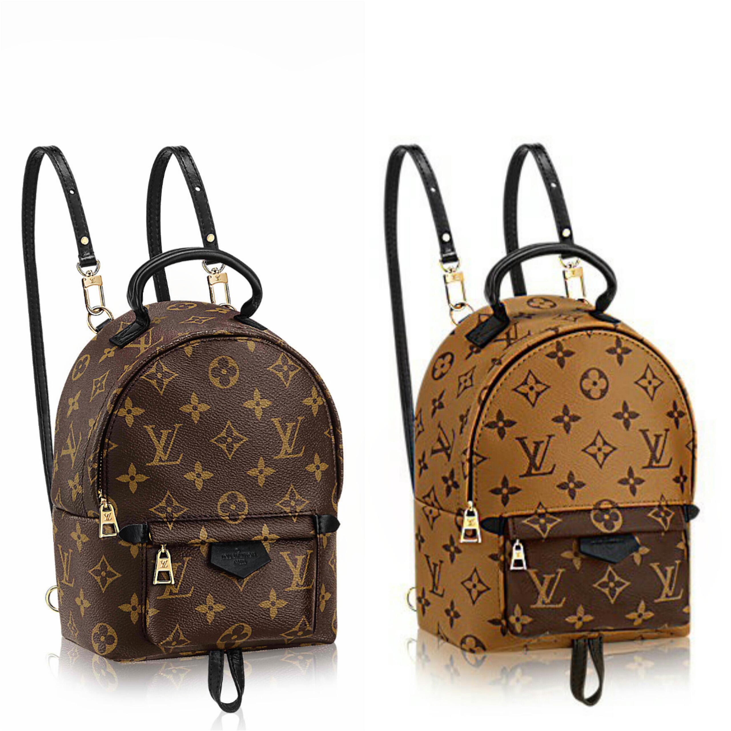 1f4d57eb3b9a Bag Review  Louis Vuitton Palm Springs Mini Mono Backpack – The Bag ...